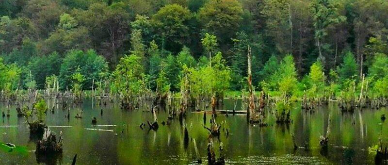 دریاچه ارواح ، منطقه ای ترسناک