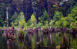 تور دریاچه ارواح